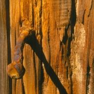 rusty-bolt-in-wood-2
