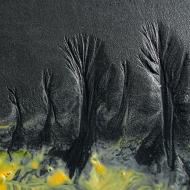 sand_trees4