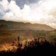landscape_mg_5043