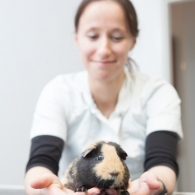 vet-photography-untitled-252
